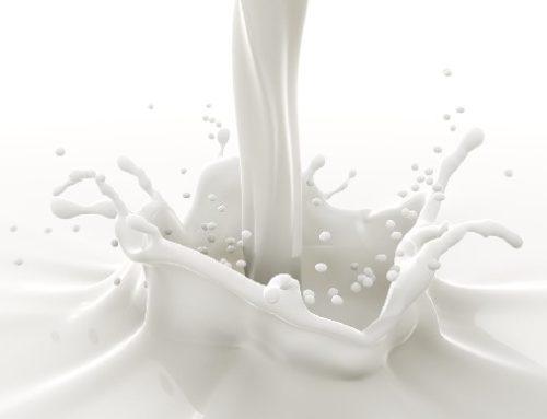 Perchè il latte è bianco?